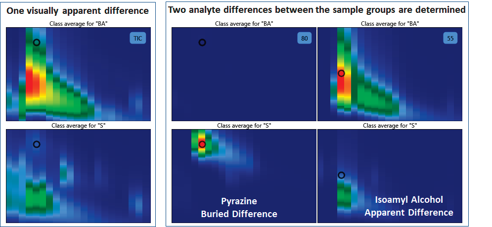 ChromaTOF Tile Visual Differences