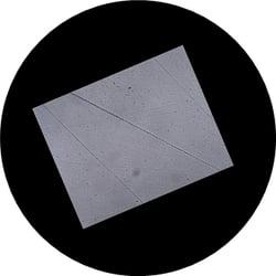 No1-sample