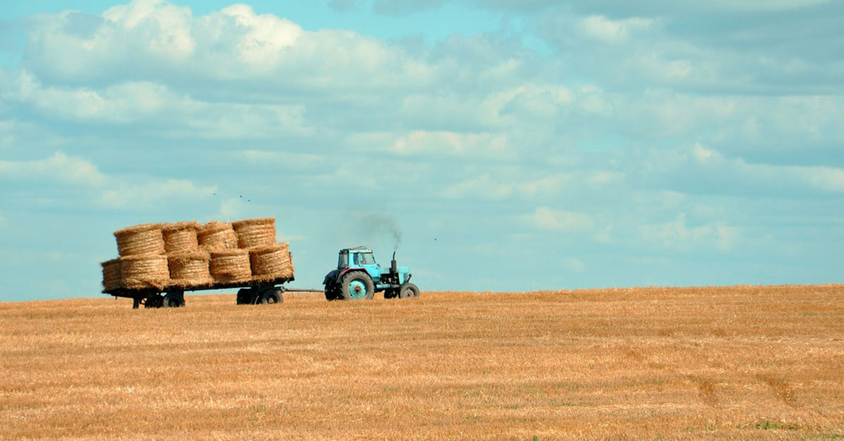 Hay bales in field being moved by tractor