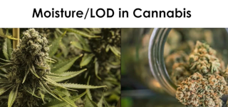 videothumbnail-cannabismoisture-leco