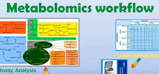 Metabolomics Workflow Screenshot from High Resolution GC-MS for Metabolomic Applications presentation by Vladimir Tolstikov of Eli Lilly and Company